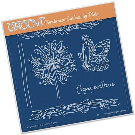 Gabarit tracage du parchemin fleurs d'agapanthe et papillon Groovi