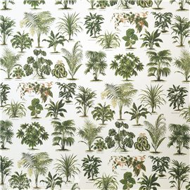 Papier tassotti à motifs plantes tropicales