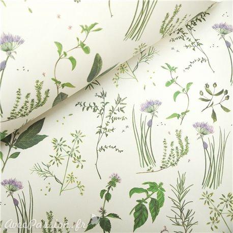 Papier tassotti à motifs herbes aromatiques