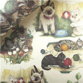 Papier tassotti à motifs chats