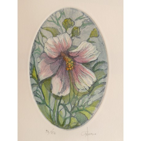 Gravure originale eau forte ovale hibiscus
