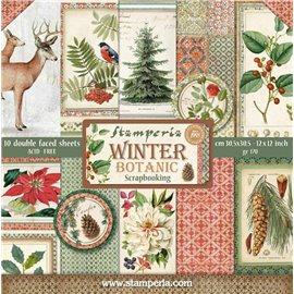 Papier scrapbooking assortiment assortiment winter botanic 10f recto verso