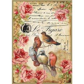 Papier de riz oiseaux le figaro Stamperia format A4