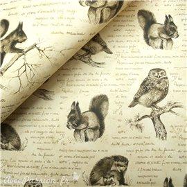 Papier tassotti à motifs la forêt magique