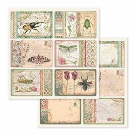 Papier scrapbooking réversible cartes botaniques 30x30