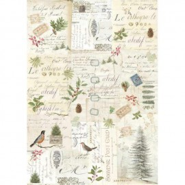 Papier de riz Stamperia 42x30cm winter botanic