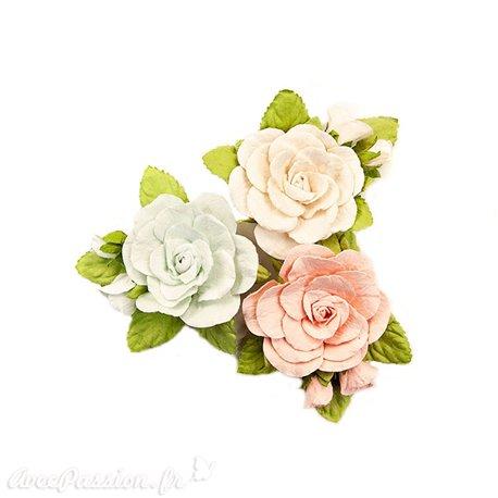 Fleurs Prima Marketing Poetic Rose Flowers Sweet Roses