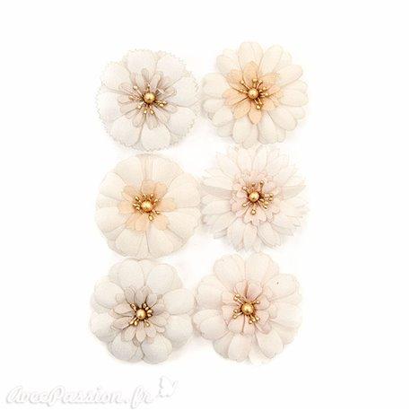 Fleurs Prima Marketing Pretty Pale Flowers Pale Petals