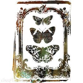 Transfert pelliculable Redesign Prima marketing décor Butterfly Frame