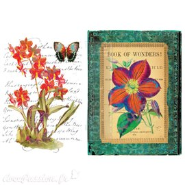 Transfert pelliculable Redesign Prima marketing décor Wondrous Flora