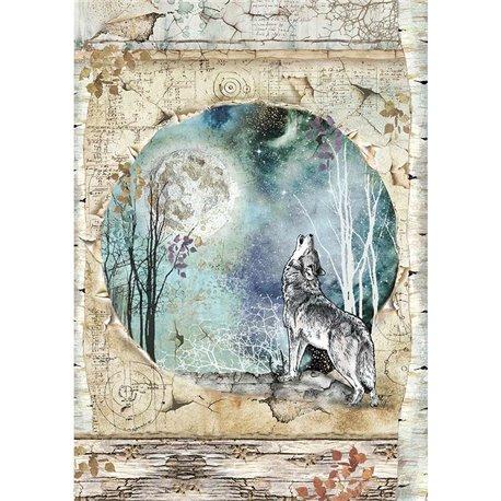 Papier de riz Stamperia 21x29,7cm loup et lune cosmos de cristina radovan