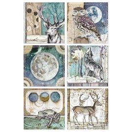 Papier de riz Stamperia 21x29,7cm cartes cosmos de cristina radovan
