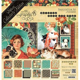 Papier scrapbooking assortiment Graphic 45 raining cats and dogs recto verso 30x30 24fe