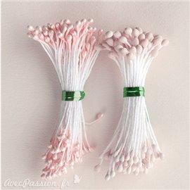 Pistils Etamines pour coeurs de fleurs nude nacré et mat 2mm