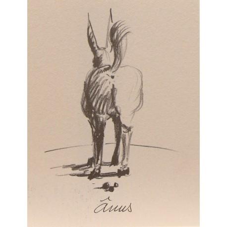 Carte postale les âneries Anus