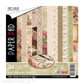 Papier scrapbooking 15x15 assortiment the muse 24f