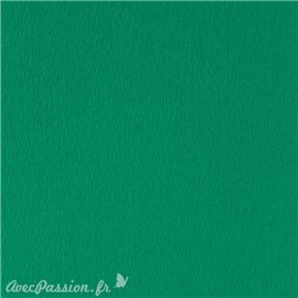 Papier scrapbooking uni Papicolor 30x30cm Vert Foncé