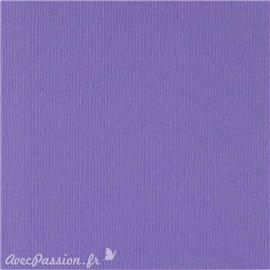 Papier scrapbooking uni Papicolor 30x30cm Violet Foncé