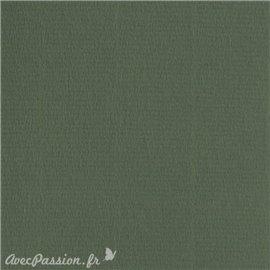 Papier scrapbooking uni Papicolor 30x30cm Vert Olive