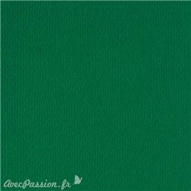Papier scrapbooking uni Papicolor 30x30cm Vert Noël