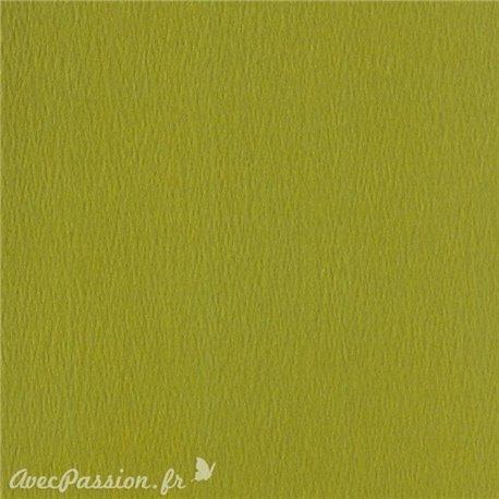 Papier scrapbooking uni Papicolor 30x30cm Vert Mousse
