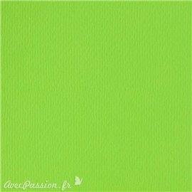 Papier scrapbooking uni Papicolor 30x30cm Vert Claire