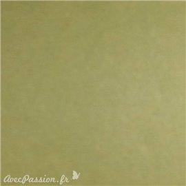 Papier scrapbooking uni Papicolor 30x30cm Vert De Moutarde