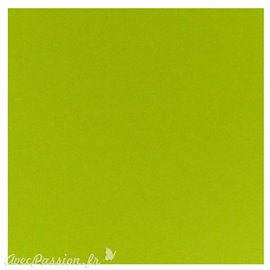 Papier scrapbooking uni Papicolor 30x30cm Apple Green
