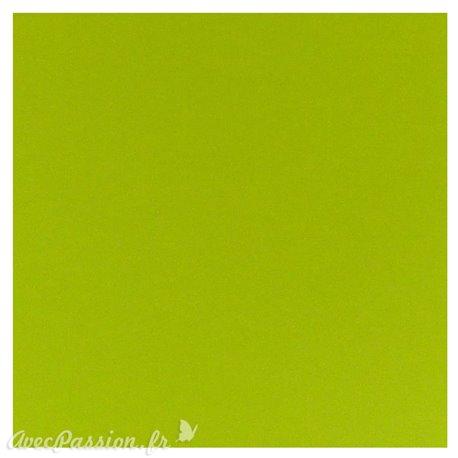 Papier scrapbooking uni Papicolor 30x30cm Apple Green