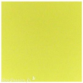 Papier scrapbooking uni Papicolor 30x30cm Soft Green