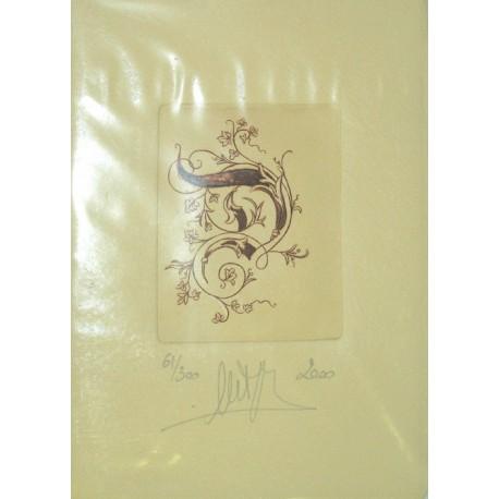 Gravure Caroline Delépine taille douce lettre D