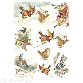 Papier de riz oiseaux 21x30cm