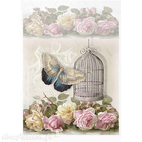 Papier de riz papillon & cage 21x30cm