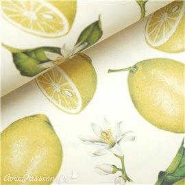 Papier tassotti motifs citrons