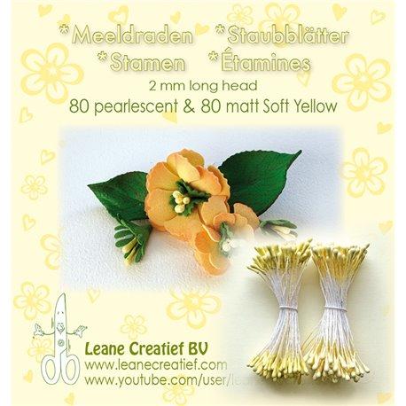 Pistils Etamines pour coeurs de fleurs jaune layette nacré et mat 2mm