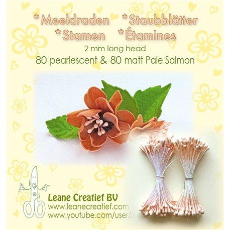 Pistils Etamines pour coeurs de fleurs rose saumon nacré & mat 2mm
