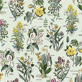 Papier tassotti à motifs fleurs flora fond vert d'eau