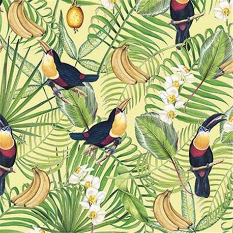 Papier tassotti à motifs toucan