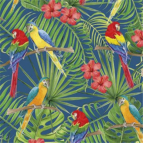 Papier tassotti à motifs perroquet ara