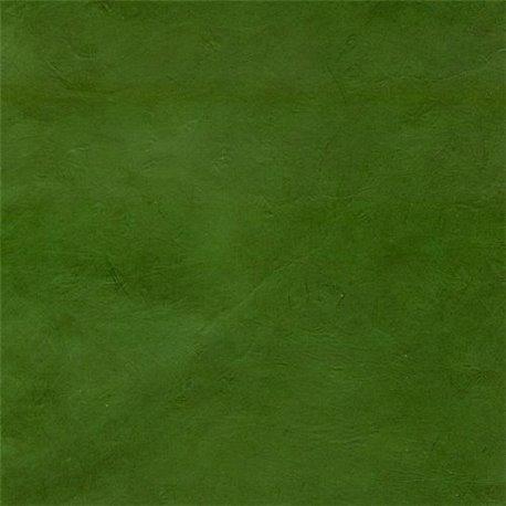 Papier népalais lokta lamaLi vert nature