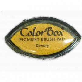 Encreur tampon Color Box oeil de chat canary