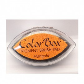 Encreur tampon Color Box oeil de chat marigold