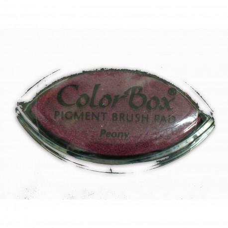 Encreur tampon Color Box oeil de chat peony