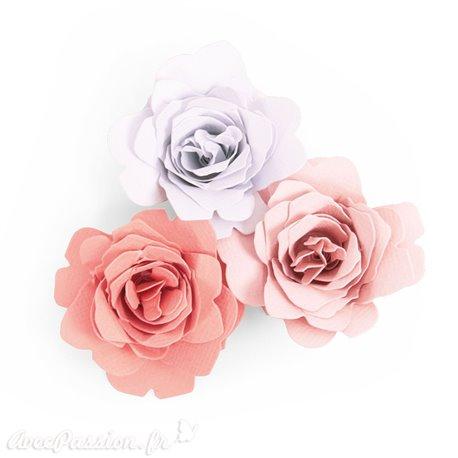 Dies Sizzix de découpe rose bigz