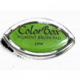 Encreur tampon Color Box oeil de chat lime