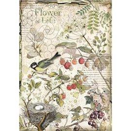 Papier de riz Stamperia 21x29,7cm Fleurs et Fruits