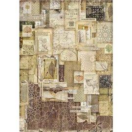 Papier de riz Stamperia 42x30cm encadrés nature
