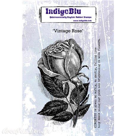 Tampon caoutchouc IndigoBlu Vintage Rose A6