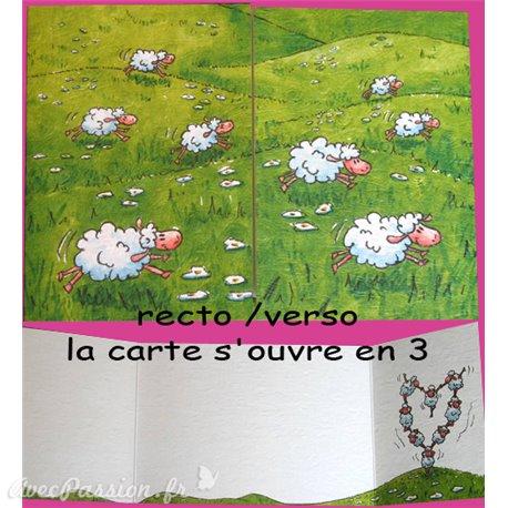 Carte postale mouton cache cache