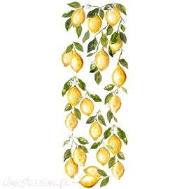 Transfertpelliculable Iron Orchid Designs IOD Lemon Drop 30x84cm